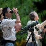 Birdwatching in Corcovado Costa Rica